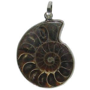 a1215-natural-ammonite-fossil-pendant