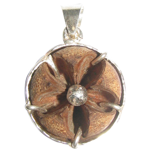 a5143-natural-tibetan-evil-eye-protection-flower-silver-pendant